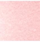 Parche Pink